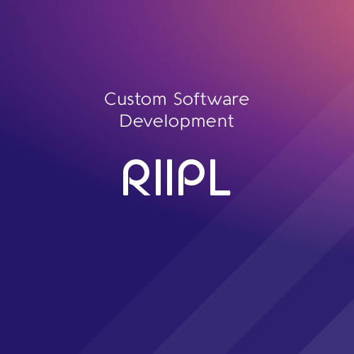 RIIPL Custom Software Development